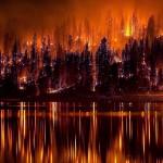 Площадь лесных пожаров на Дальнем Востоке за сутки выросла на 9 тыс. га