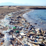 Крупные международные компании объединили усилия для борьбы с загрязнением пластиком
