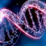 Ученые-генетики изменят ДНК человека