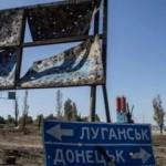 На Донбасс обрушилась «казнь египетская»: впечатляющее видео нашествия саранчи