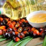 Украина впервые за 4 сезона снизила импорт пальмового масла