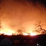 Под Одессой горят заповедники: ветер раздувает пожар